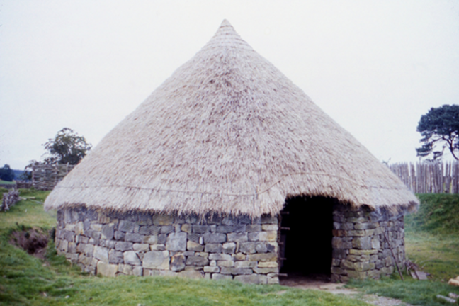 A reconstruction of a circular Iron Age round dwelling with thatched roof.