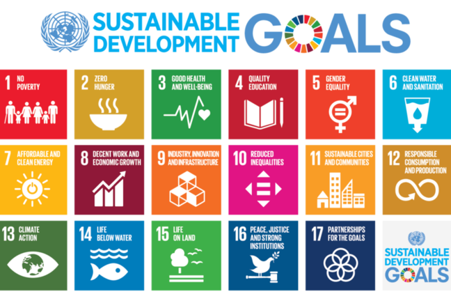 An infographic showing the 17 UN's Sustainable Development Goals