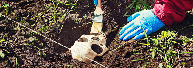 Researcher brushing a skull that has just been unearthed in an excavation