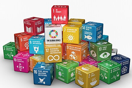 Bricks with different SDGs on them.