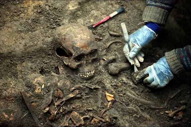 A skeleton being excavated from a mass grave. A person with gloves is lifting some of the bones with a small metal tool.