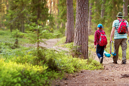Image shows a parent with two children walking through a forest.