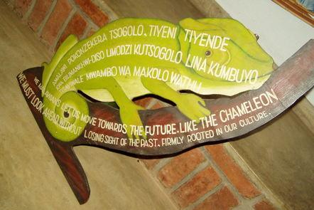 Malawi museum chameleon