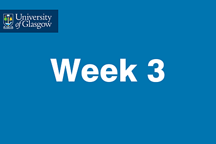 University of Glasgow - Week 3