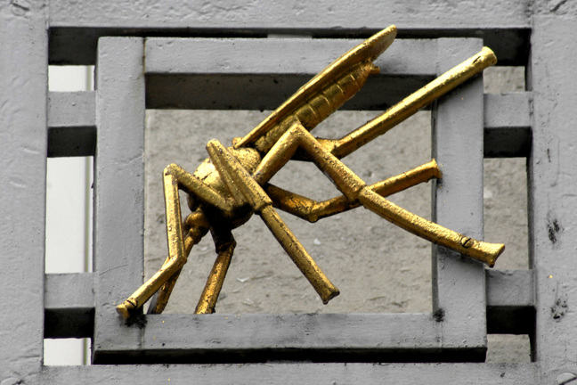 Image of bronze mosquito on the LSHTM Keppel Street building