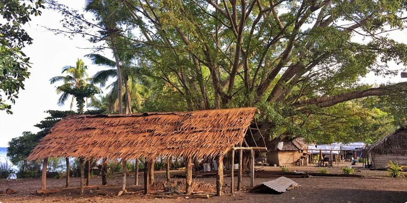 The community on Vanuatu