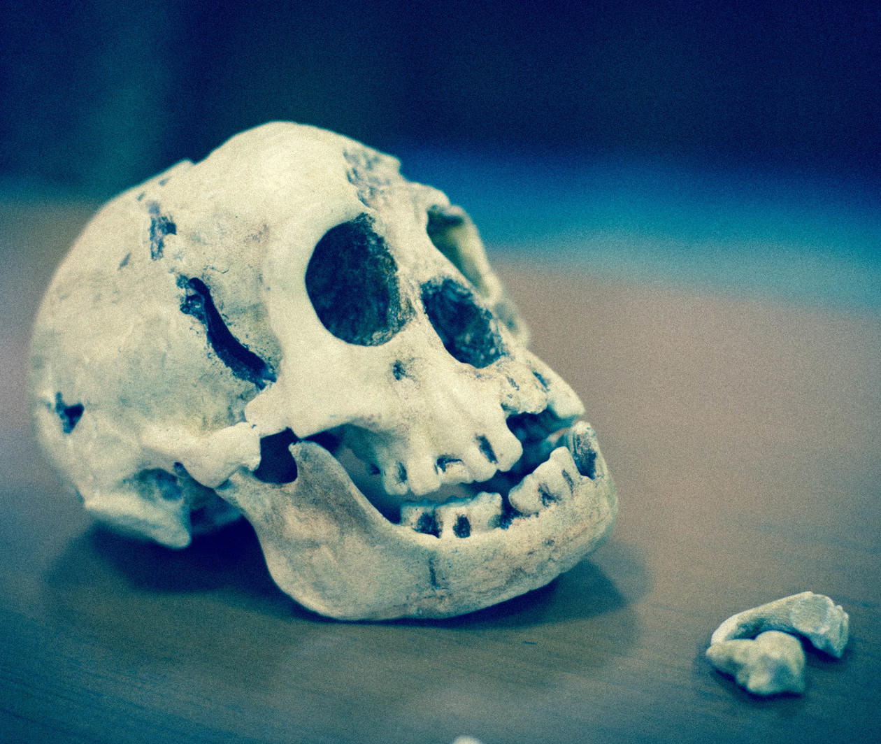 Homo Floresiensis Uncovered: The Science of 'the Hobbit'