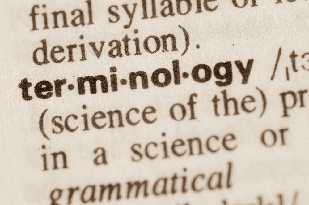 Definition of word terminology in dictionary