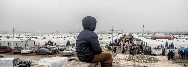 A boy looks out over Hamam Alil displaced peoples camp in Iraq. Photo: IFRC/Tommy Trenchard/Panos Pictures
