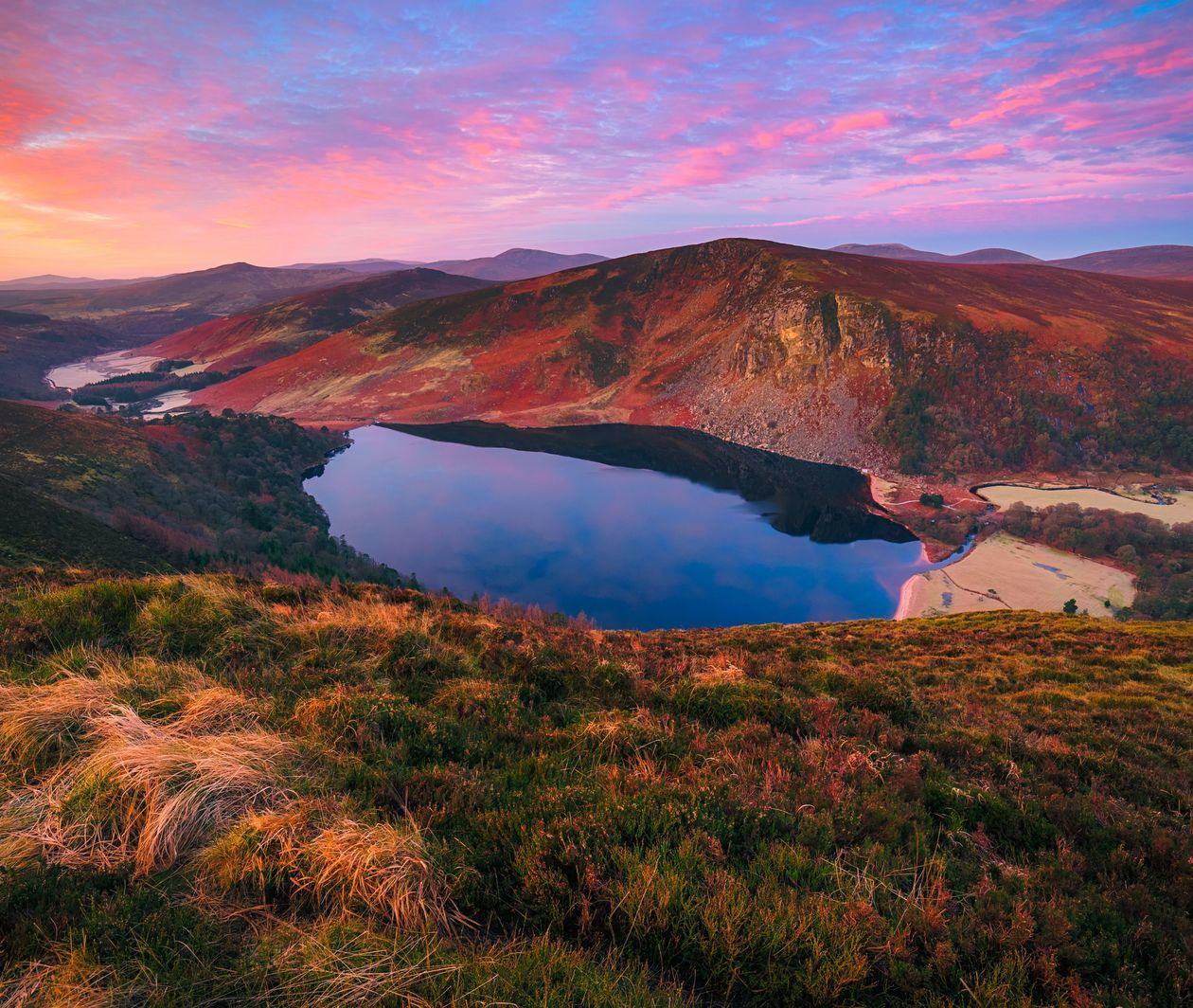 Irish 108: An Introduction to Irish Language and Culture