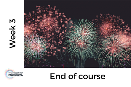 Photo of fireworks, with text 'Week 3 - End of course'
