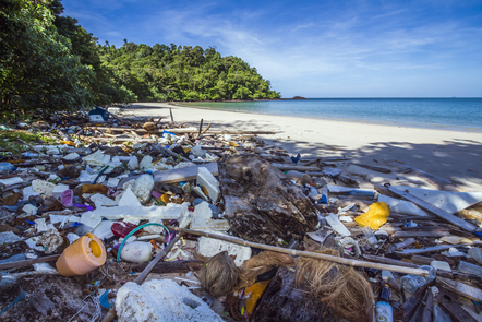 Plastic pollution on a tropical beach coastline