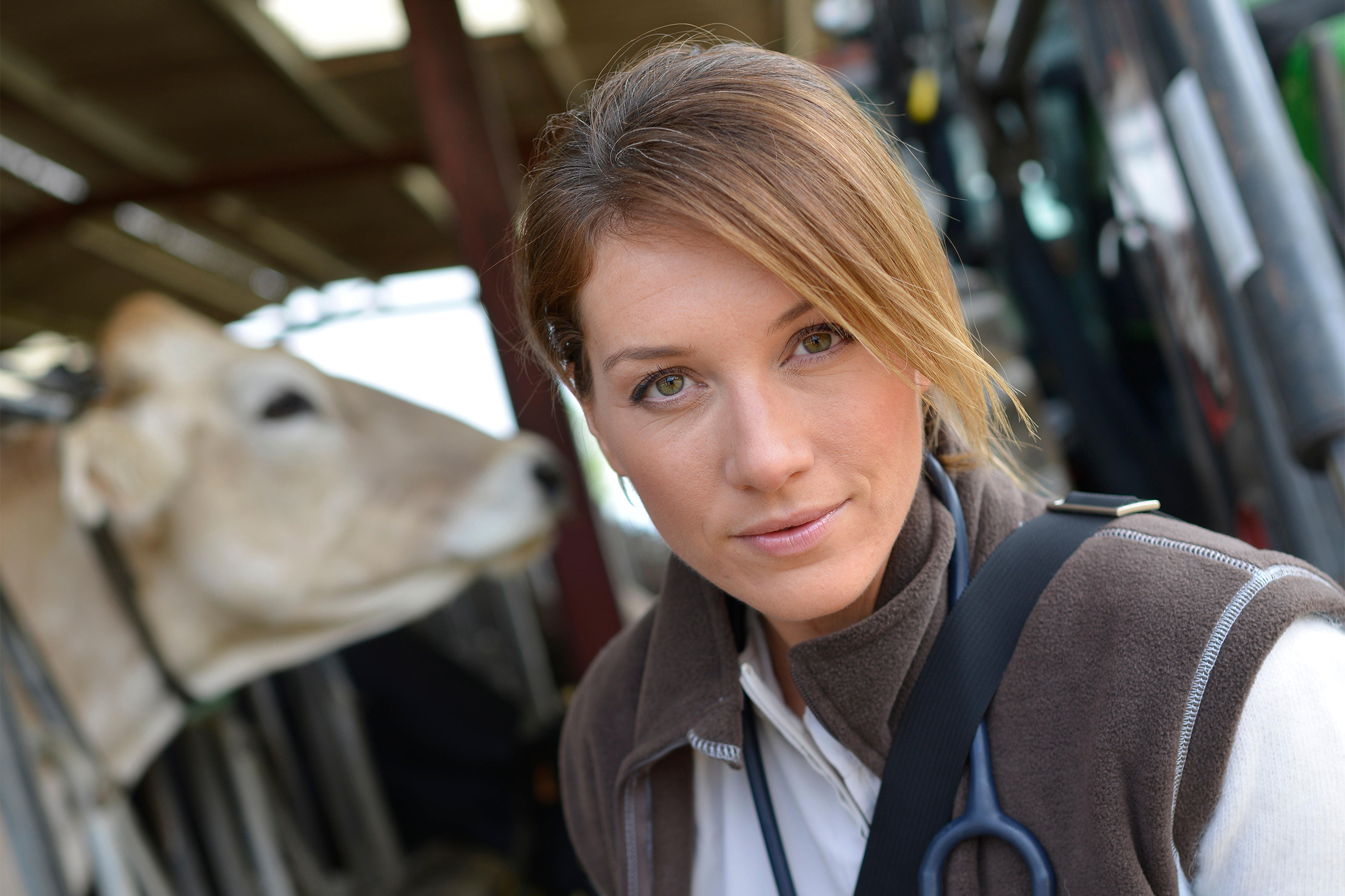 Leadership for Veterinary Professionals - Online Courses