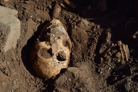 skull of a person that is partially excavated.