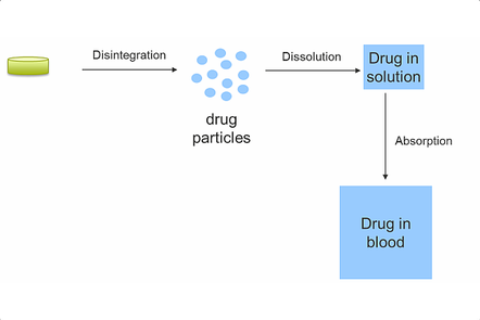 A schematic illustrating the disintegration and dissolution of a tablet leading to absorption of the dissolve drug