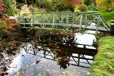 A bridge in the Botanic Gardens, Dublin.
