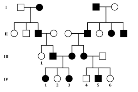 Family tree with black and white circles and squares over four generations.