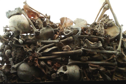 a jumble of disarticulated human bones in a narrow glass case