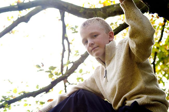 Confident boy sitting in a tree
