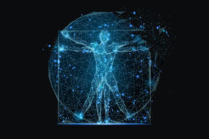 Mapped out image of the human structure