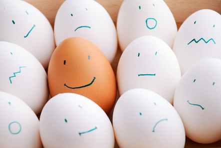 White and one brown smile eggs in tray horizontal.