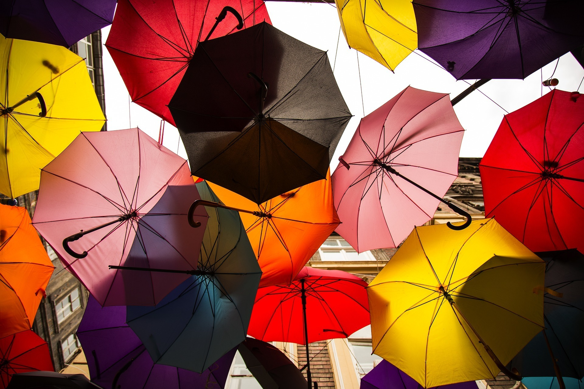 Multiple multicoloureded umbrellas, opened and clustered together.