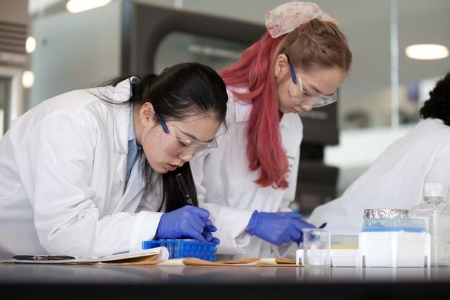 Students mark up samples in the lab