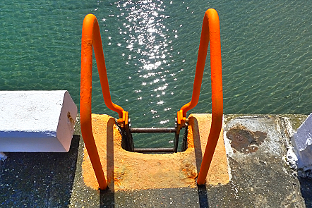 Ladder leading down from quayside into a sunlit sea
