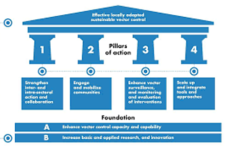 This image depicts the WHO GVCR framework. This diagram is a house shaped diagram with the two foundations at the bottom, with four pillars of action above, and the roof shape at the top which denotes 'effective locally adapted sustainable vector control'