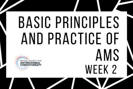 Basic principles and practice of AMS - week 2