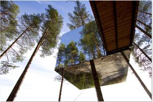 Treehotel, hotellrum i ett träd, spegelkub, blå himmel, skog, sommar