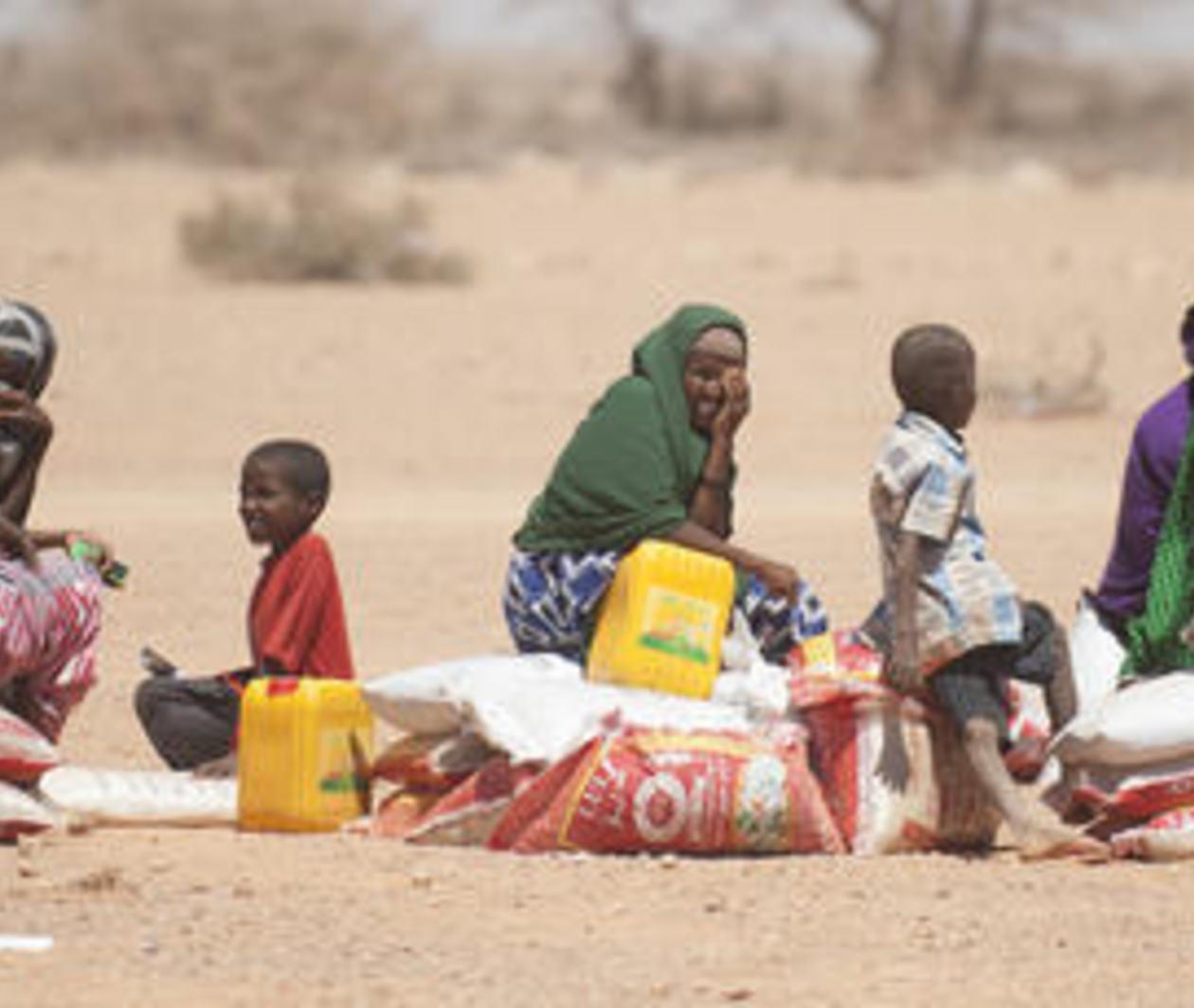 Le Développement Durable Dans L'Action Humanitaire