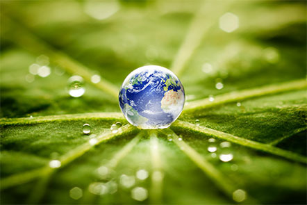 Planet Earth inside a raindrop in the middle of a green leaf.