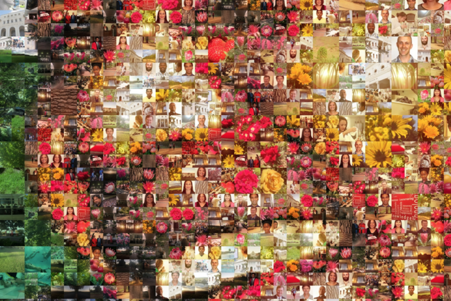 The artwork denotes a communal form of human engagement reminiscent of Ubuntu. Made up by one thousand smaller photos, the collage exhibits the significance of working together.