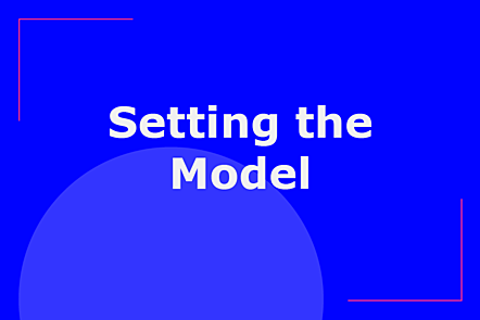 Setting the model