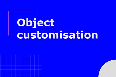 Subtopic: object customisation