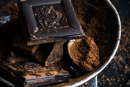Chocolate and cocoa, two very rich sources of flavonoids
