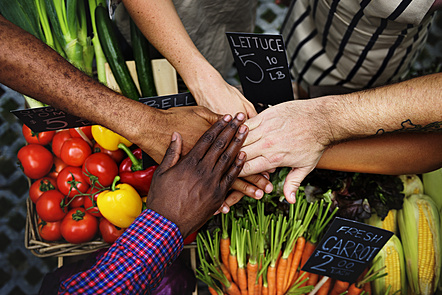 People's hands coming together, fruits and vegetables in the background.