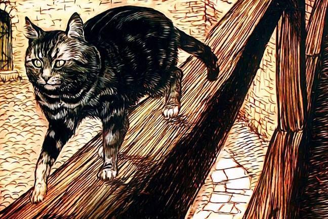 A cat walking along a wall