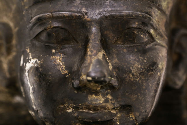 The head of an unnamed individual in the Garstang Museum of Archaeology