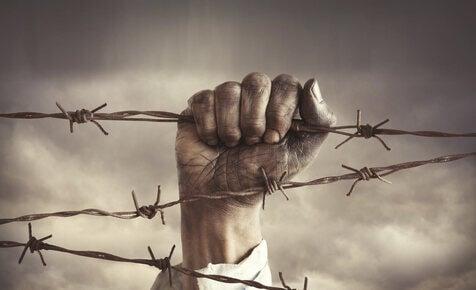 Critical International Migration Law
