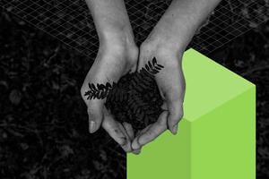 Cupped hands holding loose soil with a plant growing from it, in the background is a green cube and grid.