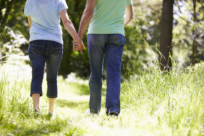 An image of two people with their backs to the camera, holding hands and walking down a grassy path.