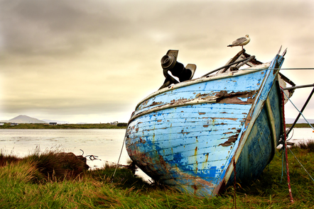 A weather beaten blue trawler or fishing boat lies on a grassy coastline. A seagull stands on the top of it against a grey sky