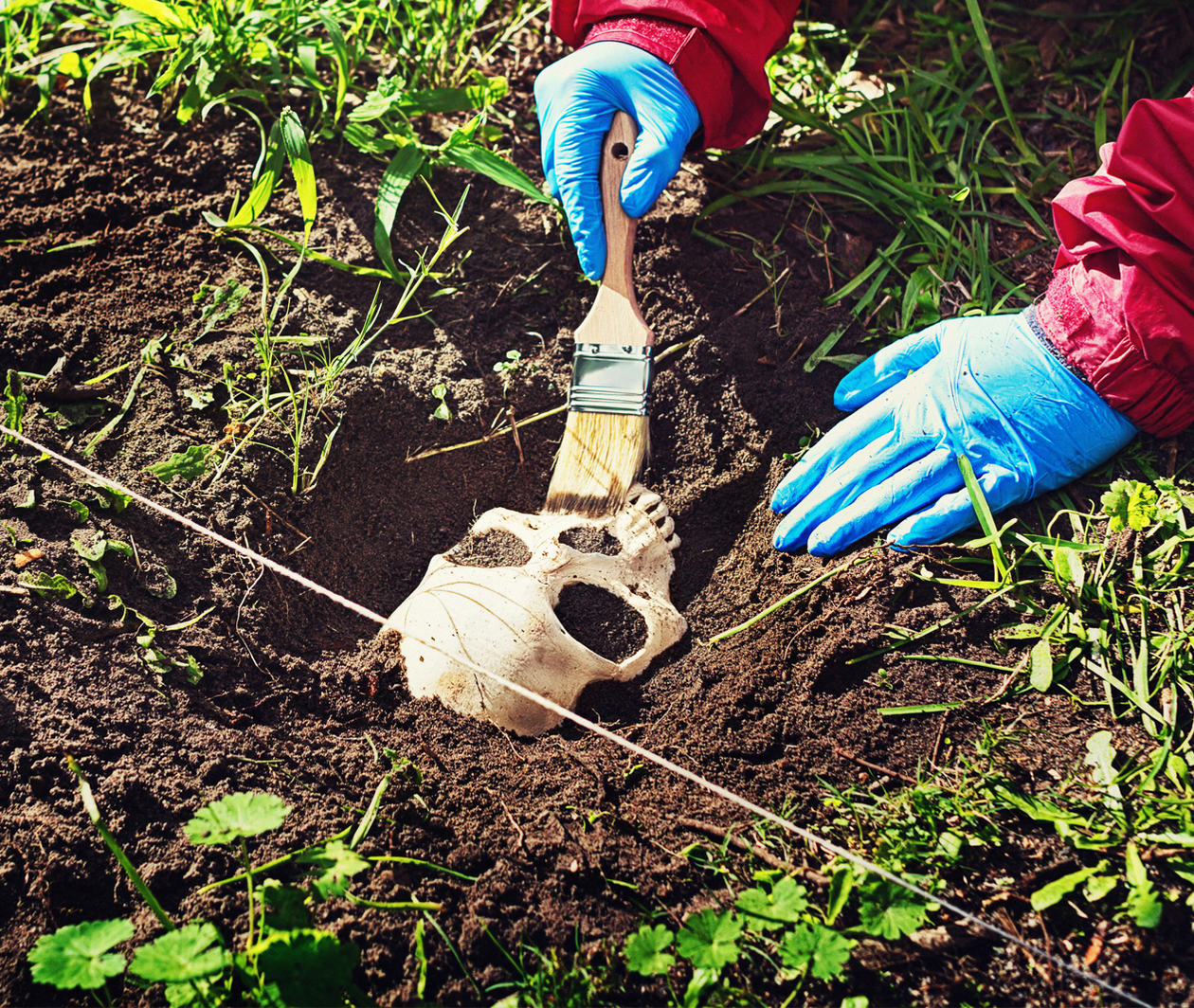 Forensic Archaeology and Anthropology