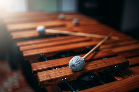 Xylophone closeup wooden percussion instrument