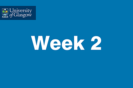 University of Glasgow - Week 2