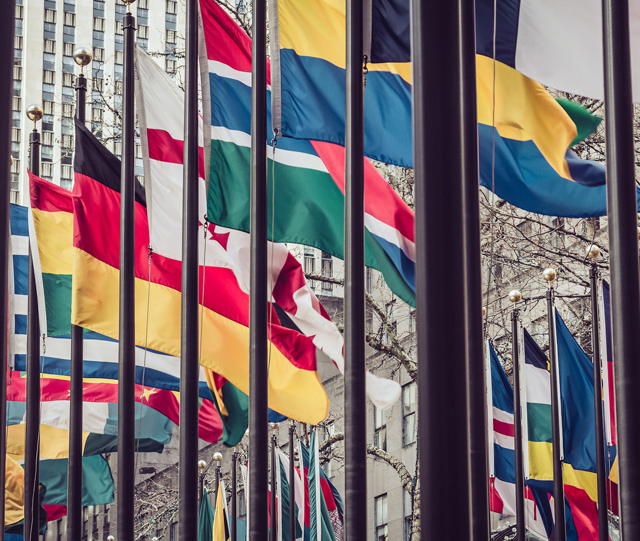 (SWM517.4) Health Systems on the World Stage