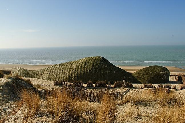 A photograph of Sandworm by Marco Casagrande in Belgium. Sea in background.