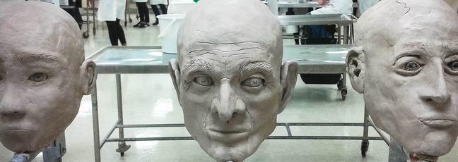 The facial reconstruction models displayed in a lab